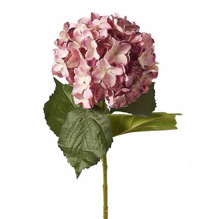 Floare decorativă Dalia