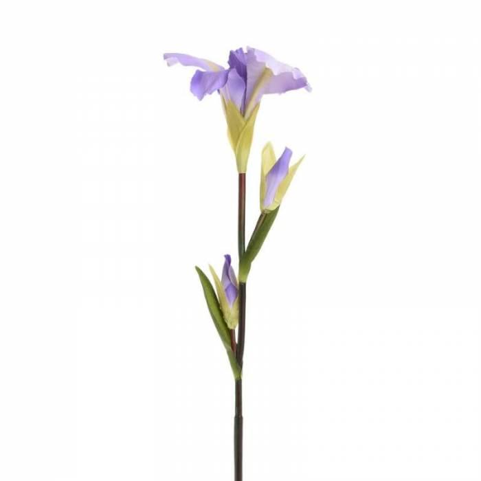 Floare decorativă Purple