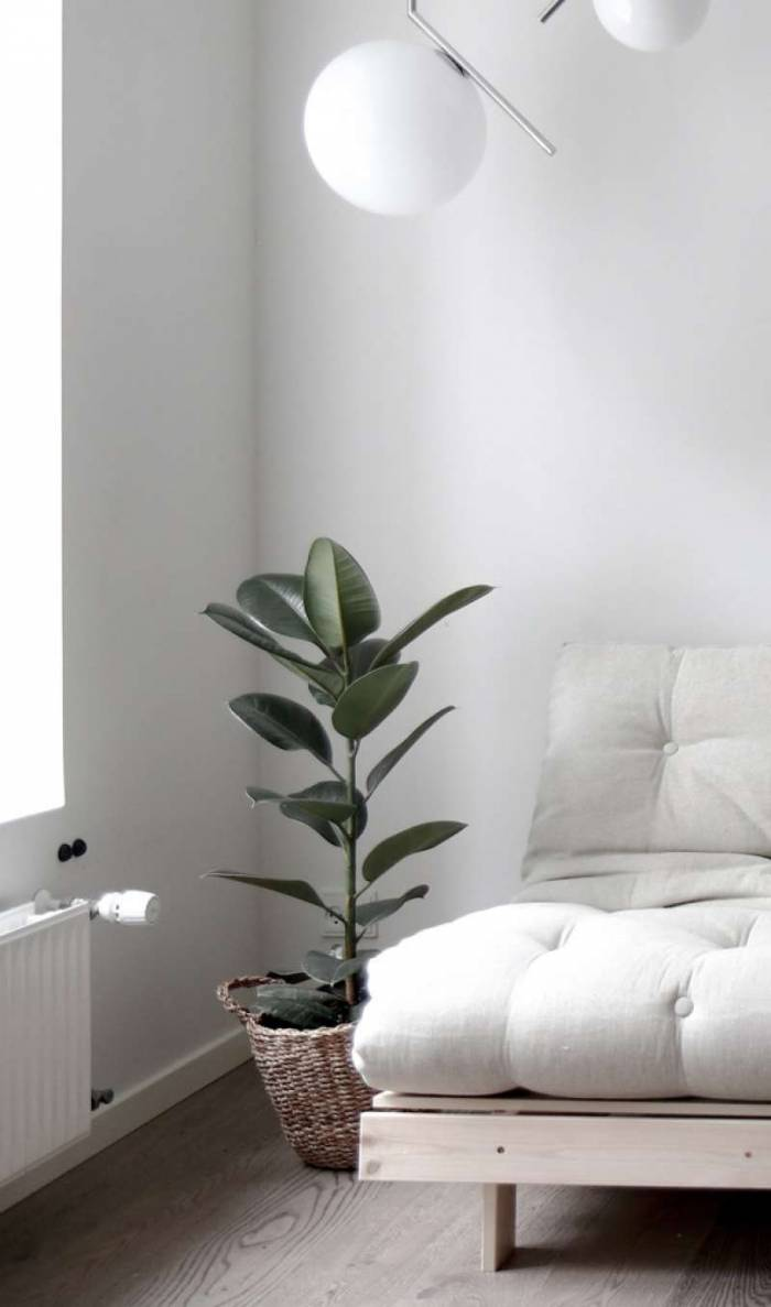 Fotoliu extensibil oliv Roots White