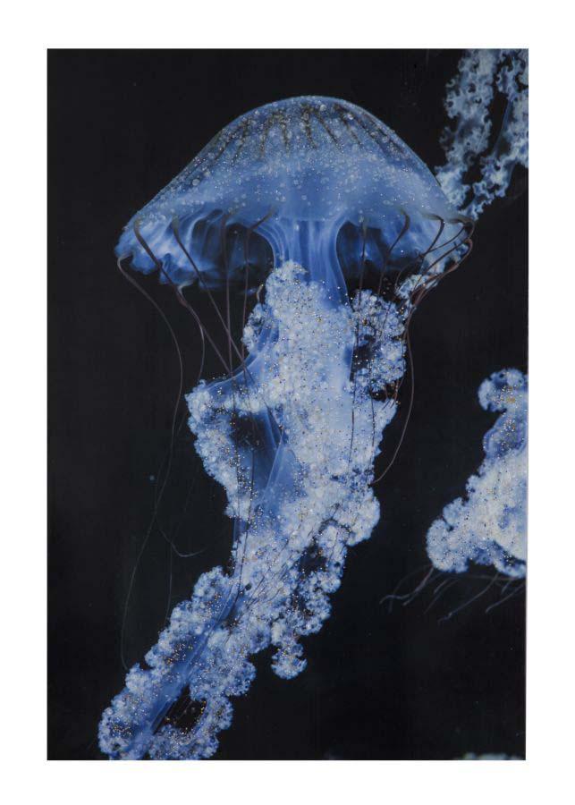 Tablou Medusa cu aplicații, 120x80x3.8 cm, lemn de brad/ canvas, multicolor