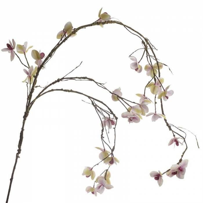 Floare decorativă Dara